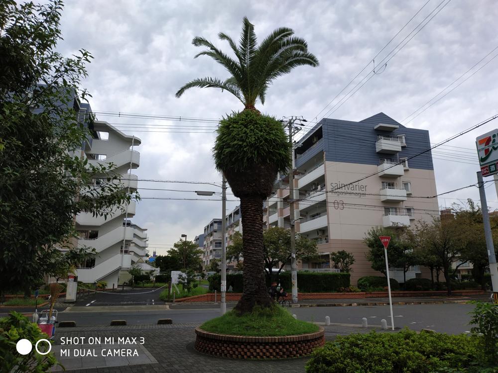 mimax3-image-01
